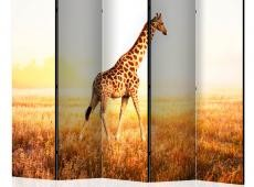 Paraván - giraffe - walk II [Room Dividers]